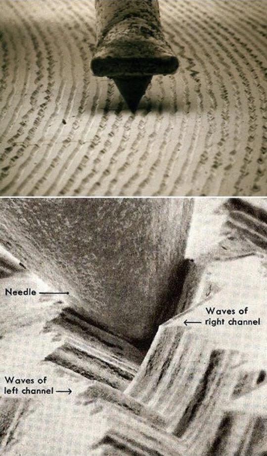 microscope-vinyl
